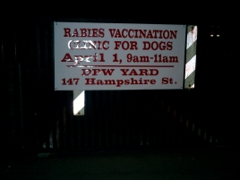 cambridge area 4 rabies clinic april 2006 hampshire street yard