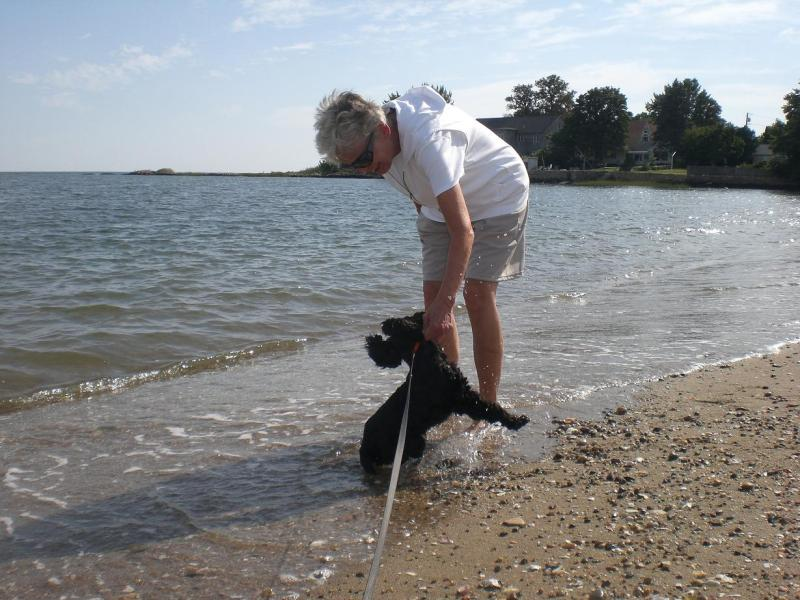 Aunty Judy dunking Roxie in the salt water