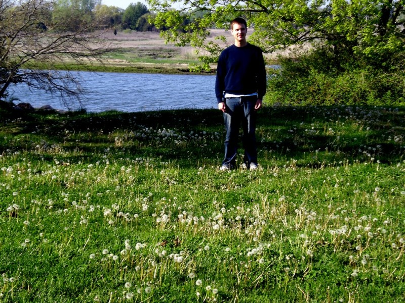 Standing in a field of dandelions prior to liftoff