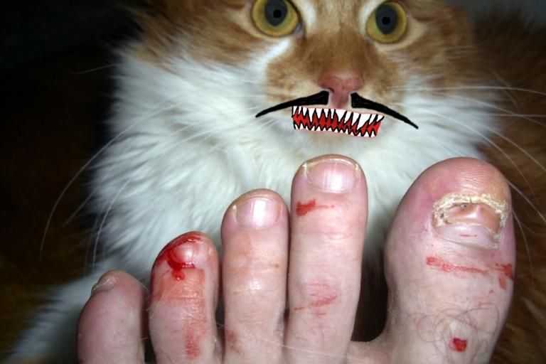 Foot murderer