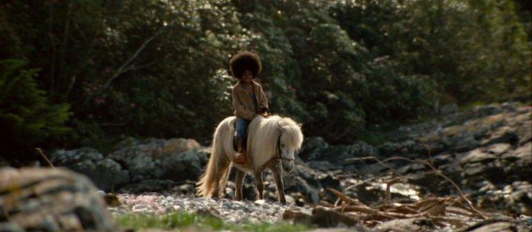 Buckwheat and pony