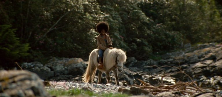 Buckwheat and pony