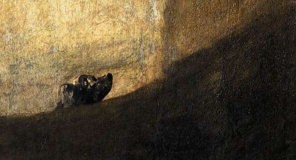 The Dog by Goya