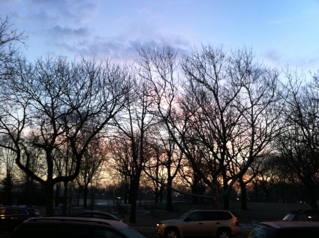 Sunrise over horner park