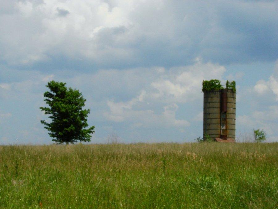 Tree silo 3rdarm
