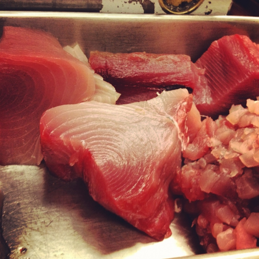 yellowfin tuna 3rdarm