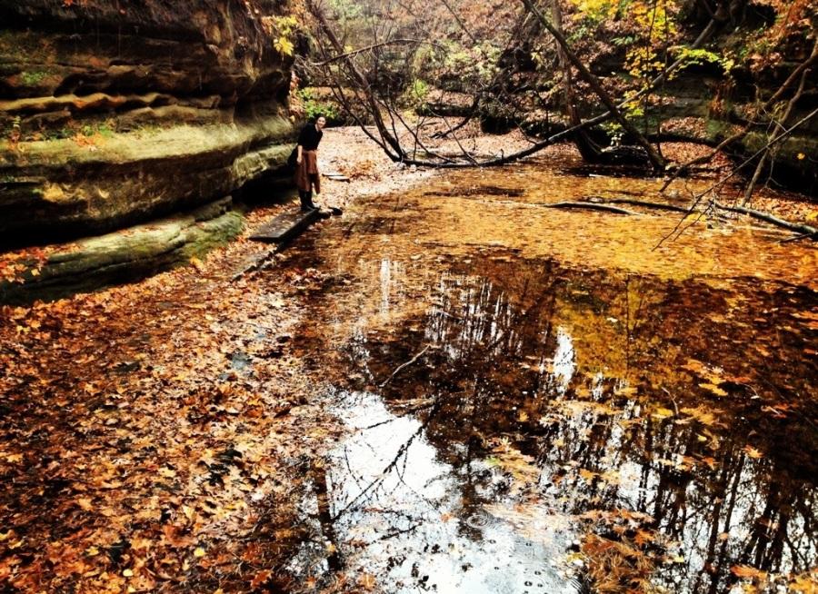 etta brown leaves matthiessen state park