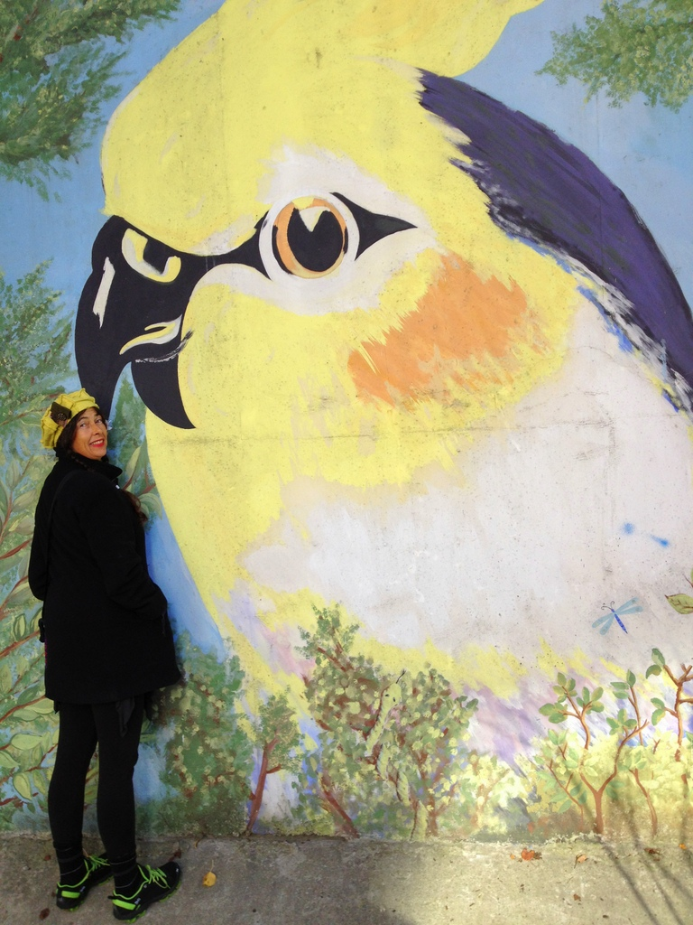 yellow bird 3rdarm marcia hubbard street murals chicago