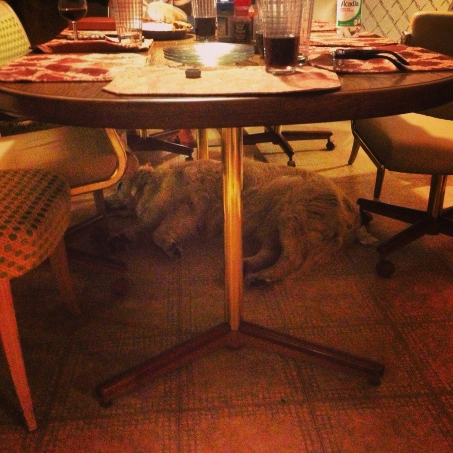 bowie table sleeping dog 3rdarm