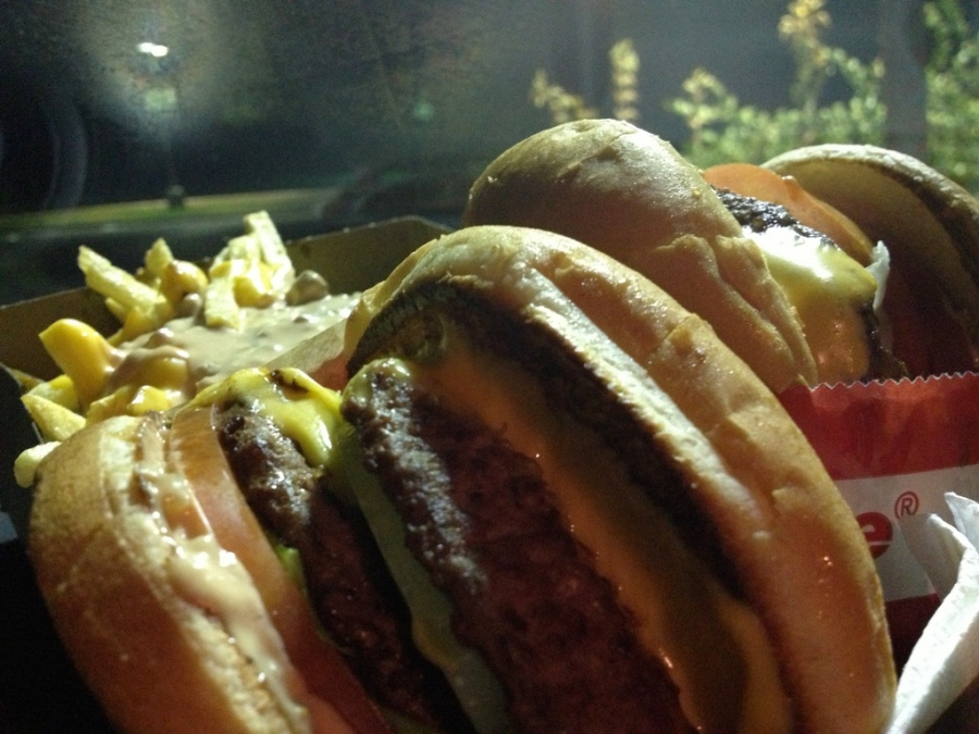 Double double animal style 3rdarm