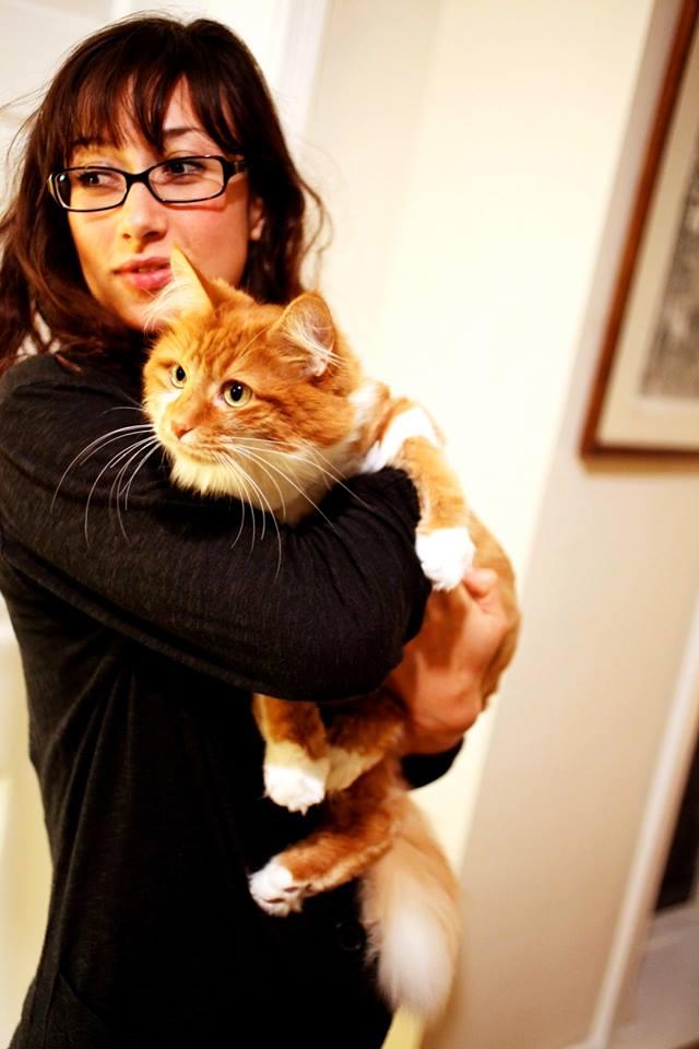 effie kostick 3rdarm chicago roly poly cat
