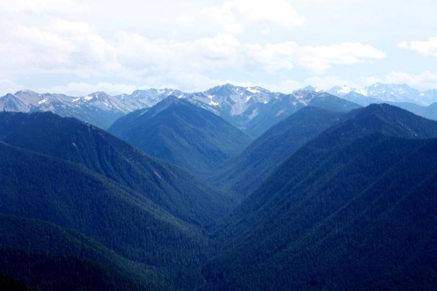 hurricane ridge olympic national park 3rdarm