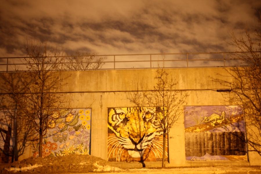 hubbard street mural chicago 3rdarm arthur mullen tiger