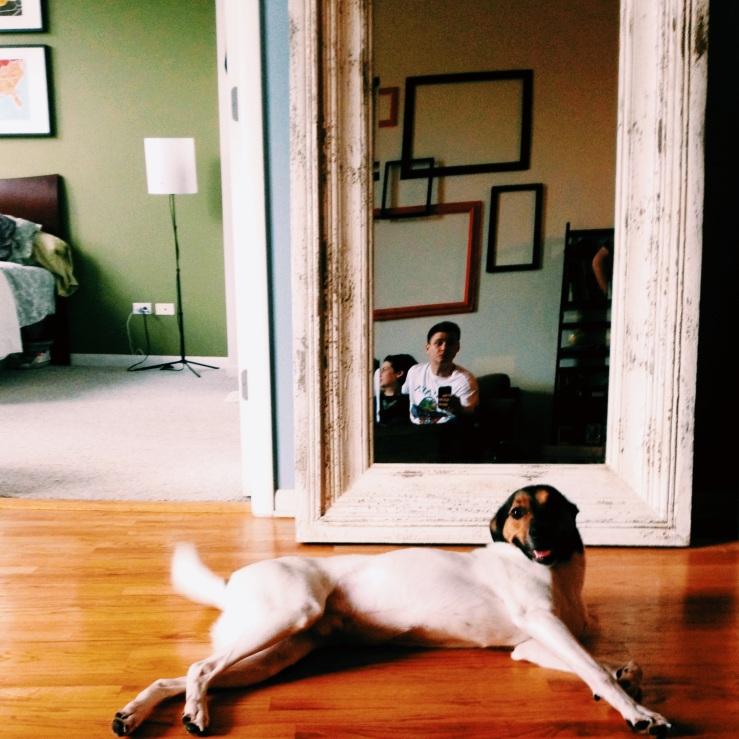 arthur mullen selfie etta kostick jedi dog baltimore stray 3rdarm