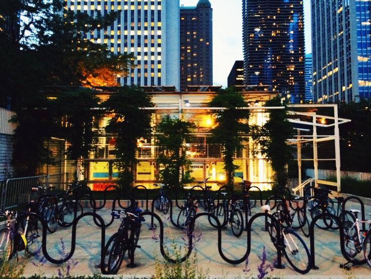 millennium park meghan etta 3rdarm chicago