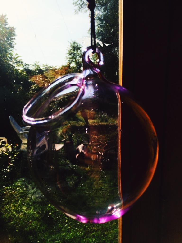 glass terrarium 3rdarm glenn kostick winchendon massachusetts