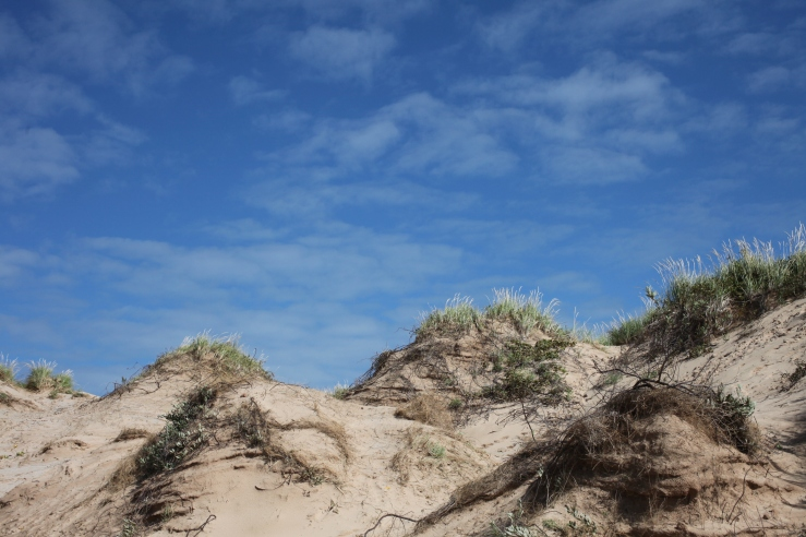 sleeping bear dunes leelanlau pie enterprise national park 3rdarm michigan