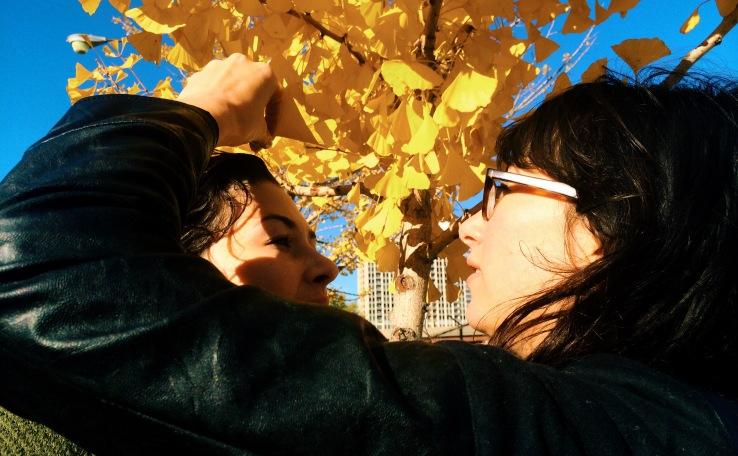 etta and effie yellow leaves 3rdarm chicago autumn kostick arthur mullen blue sky 3rdarm