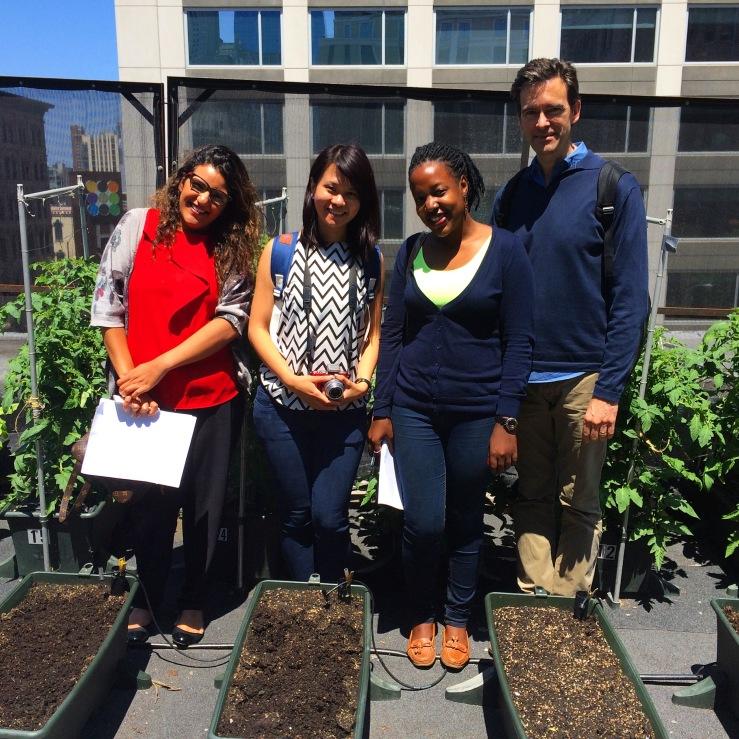 3rdarm xoco arthur mullen les roches student rooftop tomato garden xoco chicago