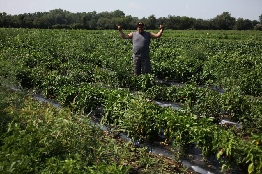 nichols farm frontera grill xoco topolobampo staff trip farm visit 3rdarm arthur mullen hector cotorra nick lloyd nichols hamburger cockscomb apple orchard rick deann bayless