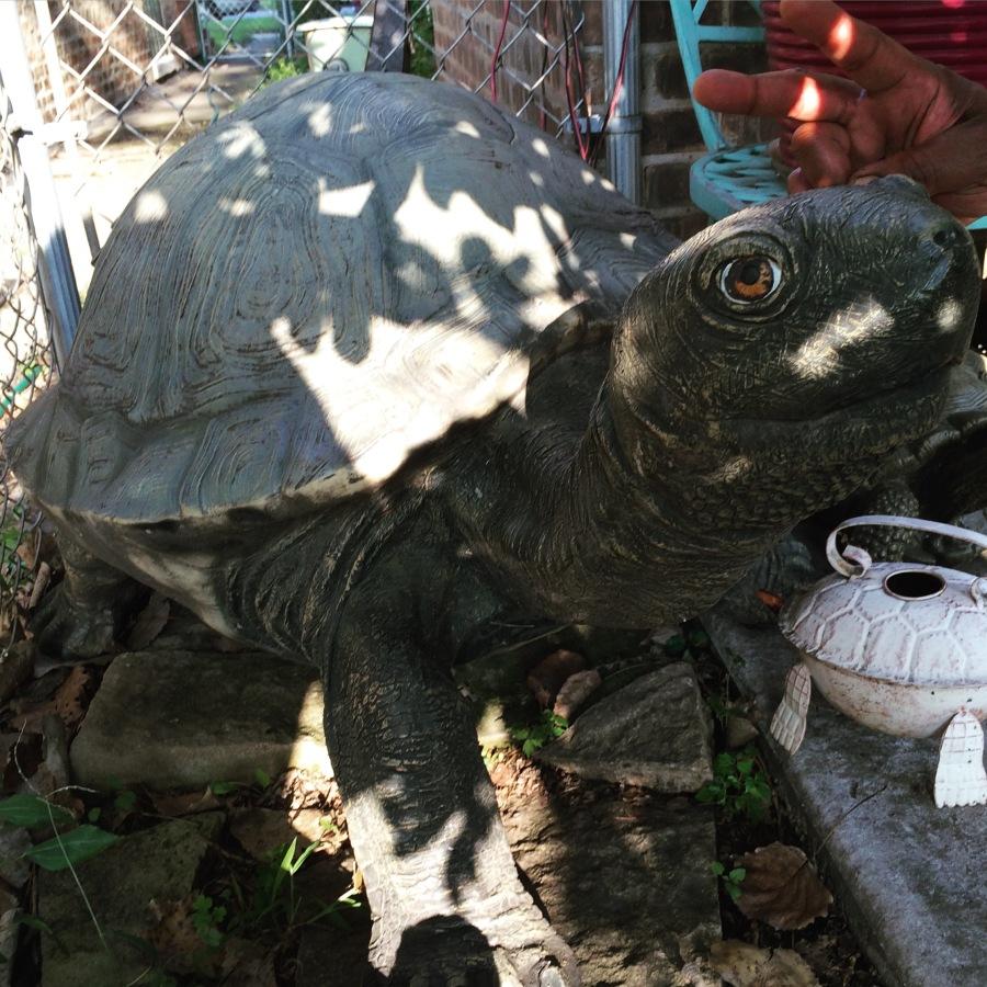 chef richard james frontera grill backyard bbq fabiola arthur mullen tortoise south side chicago 3rdarm