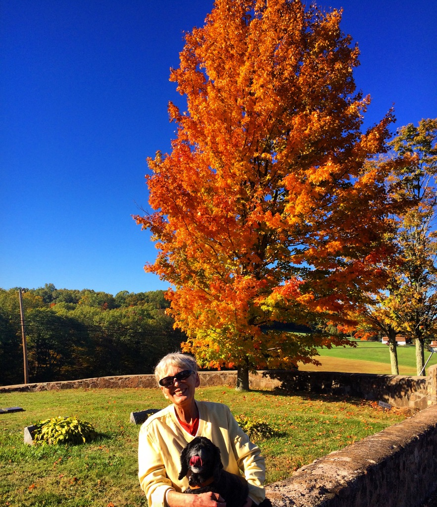 judy blasko arthur mullen metacomet ridge traprock guilford north guilford 3rdarm connecticut autumn fall leaves trees hills colors orange yellow