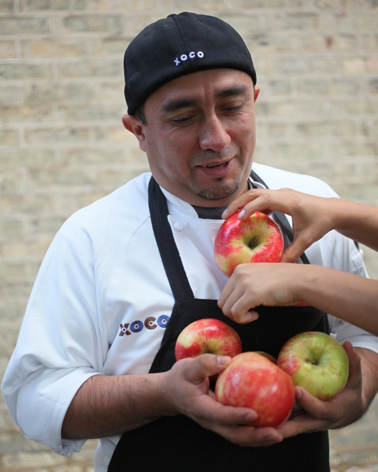 3rdarm roly poly cat alfonso sotelo manuel martinez hugo sanisaca xoco chicago autumn alonso sotelo apples nichols farm and orchard