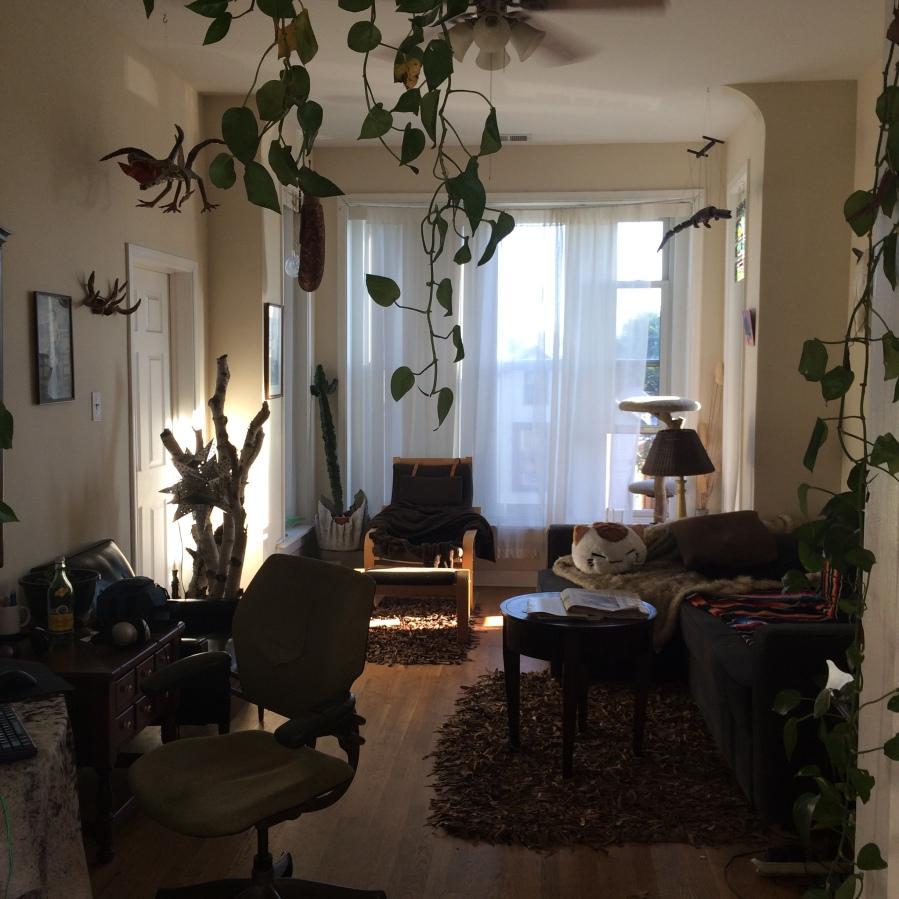 west town chicago arthur mullen 2015 apartment neighborhood