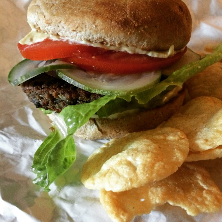 kate vegan LA roly poly maine coon cat 3rdarm chicago loving heart vegan burger 3rdarm